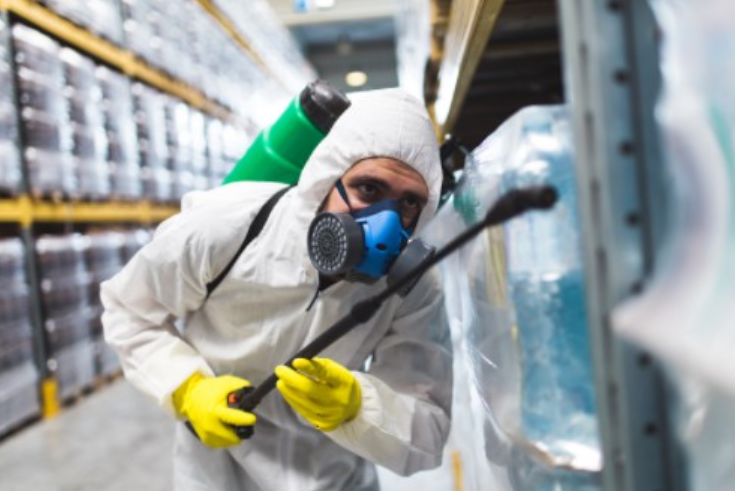 24 hour pest control services in london