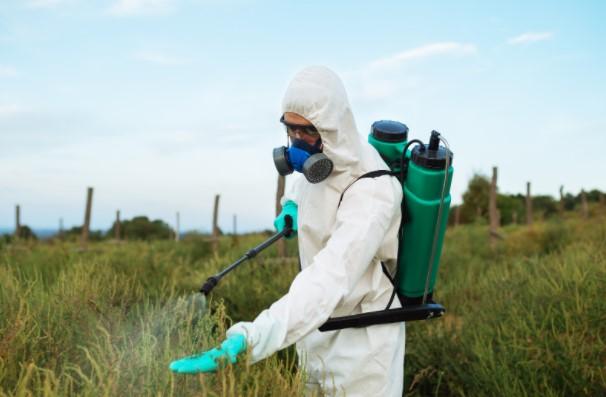 Pest Control Evelyn SE8