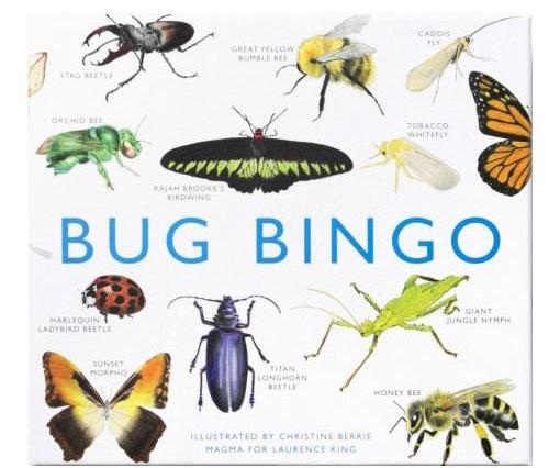 bug bingo pest game