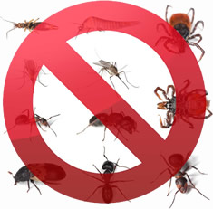 West Kensington W14 24 hr pest control