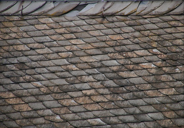 roof of a london house