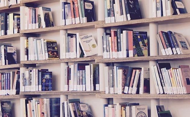 silverfish eat books