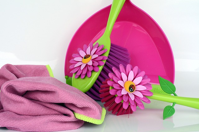 2018 Spring Cleaning Tips For Pests